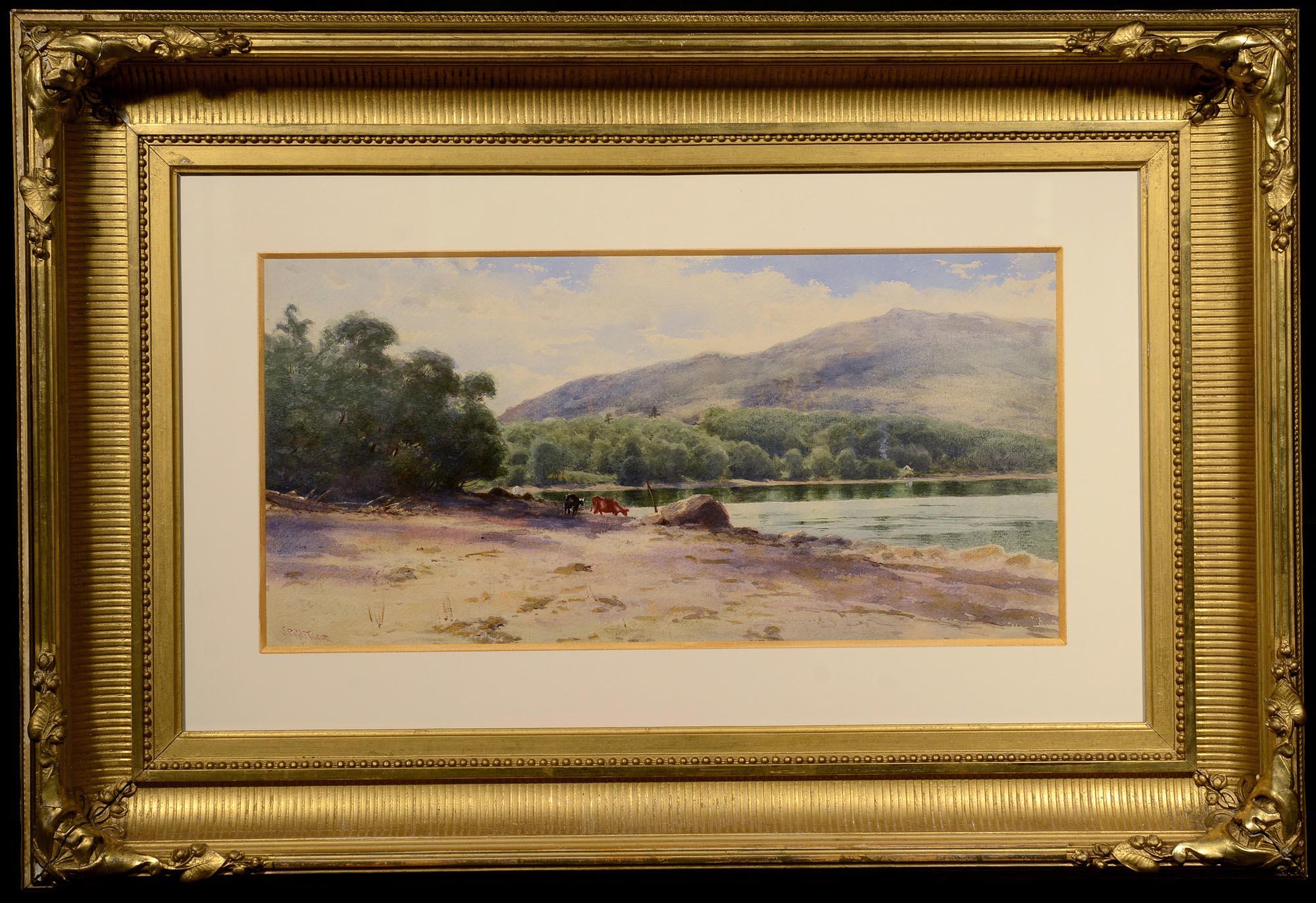 SPR Triscott Mount Desert Island framed