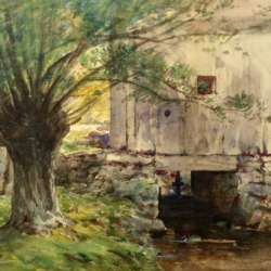 Hendriks Hallett Sunlit Willow