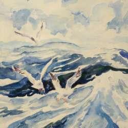 John Mulcahy Gulls