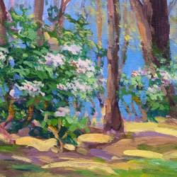Keith Oehmig Spring Rhodies