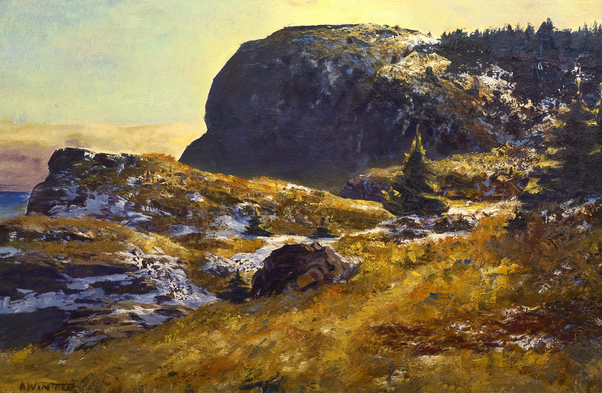 Andrew Winter Late Afternoon, Whitehead