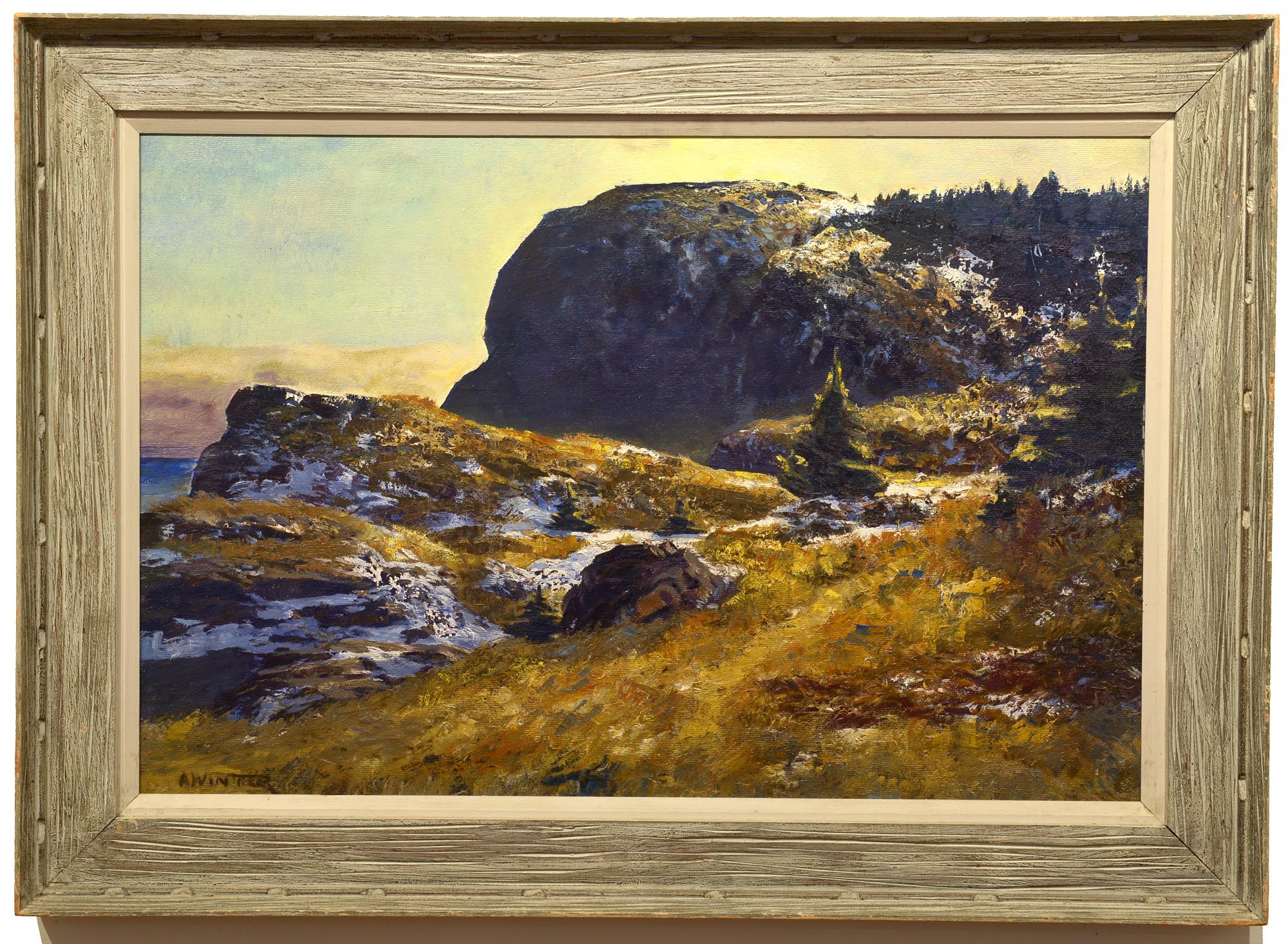 Andrew Winter Late Afternoon, Whitehead framed