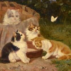 Benedikt Kogl Kittens and Butterfly