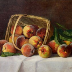 Claudius Schreyer Fresh Peaches